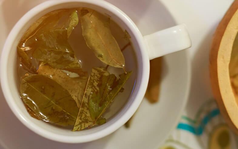 マテ茶は飲むサラダと言われる位に美容・健康志向の女性に大人気!