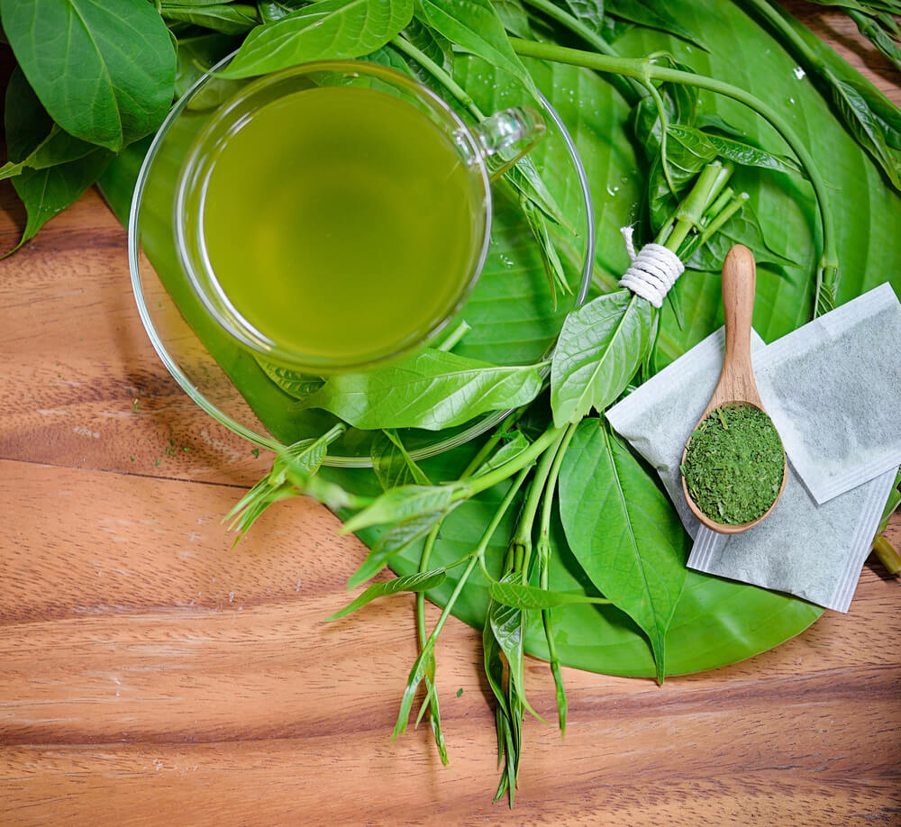 ギムネマ茶で健康促進
